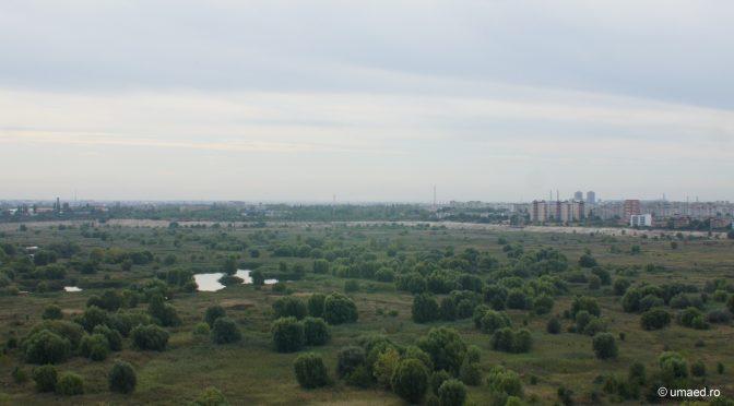 BiotopArt Bucharest
